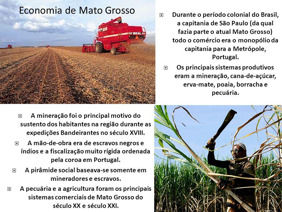 Economia de Mato Grosso Durante o período colonial do Brasil, a capitania de São Paulo (da qual fazia parte o atual Mato Grosso) todo o comércio era o monopólio da capitania para a Metrópole, Portugal.