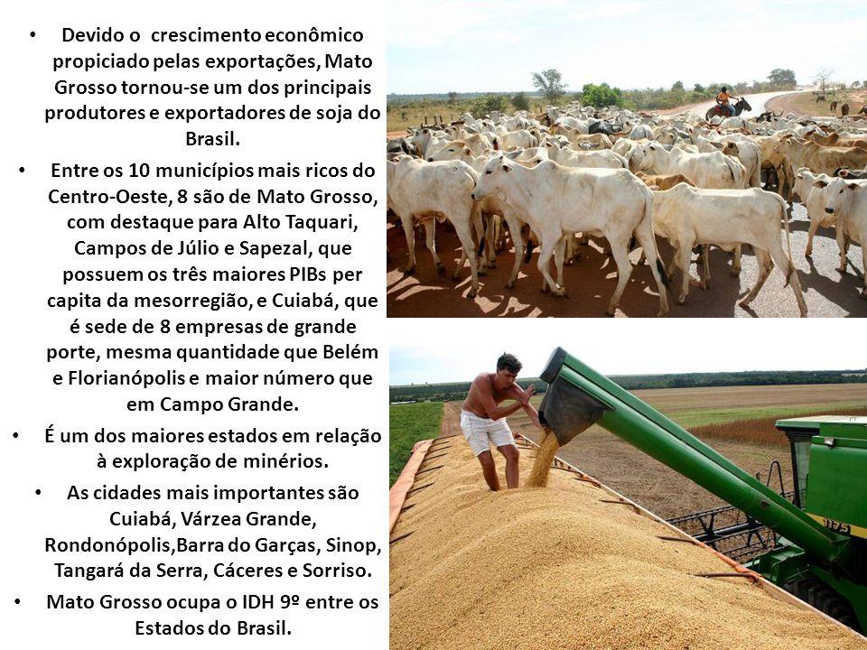 Devido o crescimento econômico propiciado pelas exportações, Mato Grosso tornou-se um dos principais produtores e exportadores de soja do Brasil.