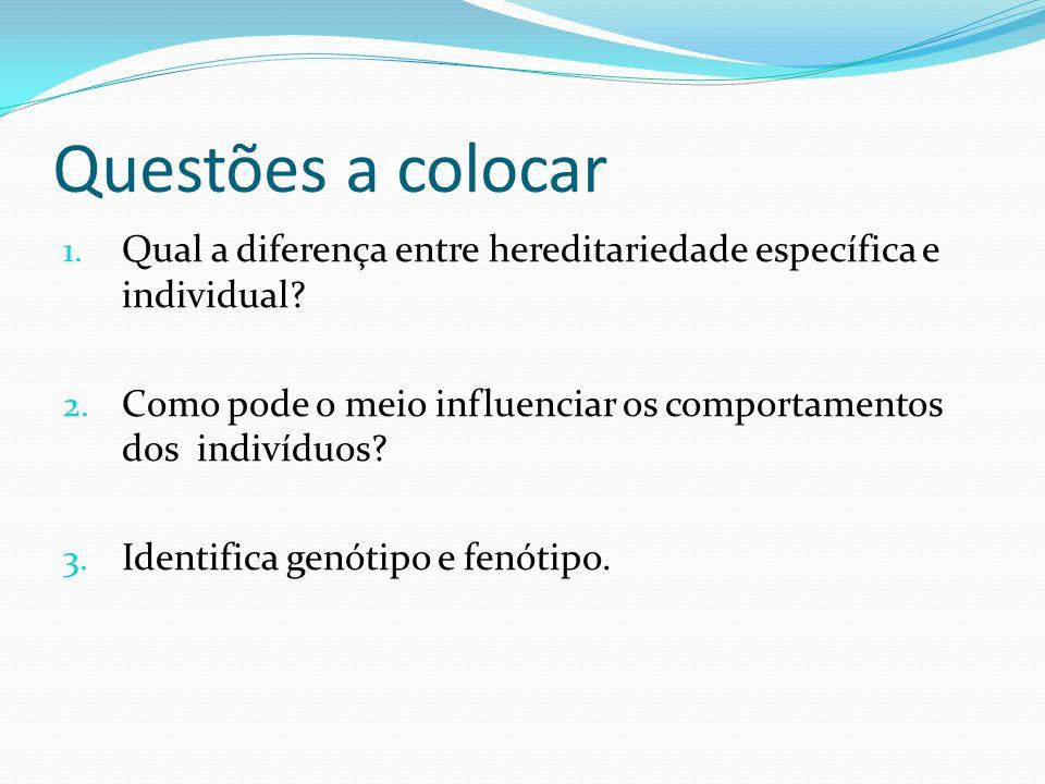 Questões a colocar 1. Qual a diferença entre hereditariedade específica e individual? 2. Como pode o meio influenciar os comportamentos dos indivíduos