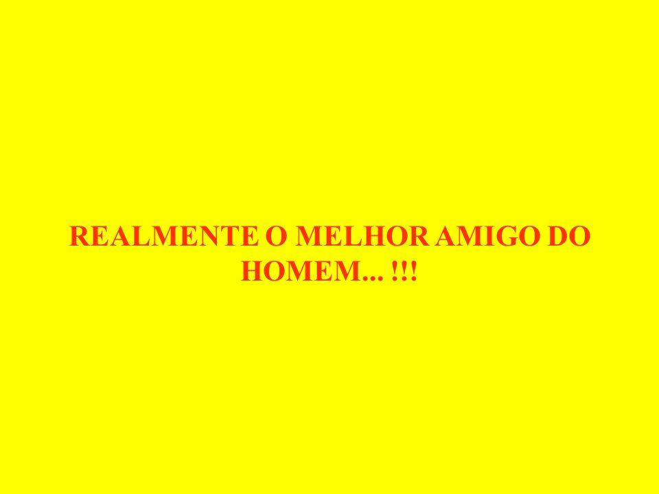 REALMENTE O MELHOR AMIGO DO HOMEM... !!!
