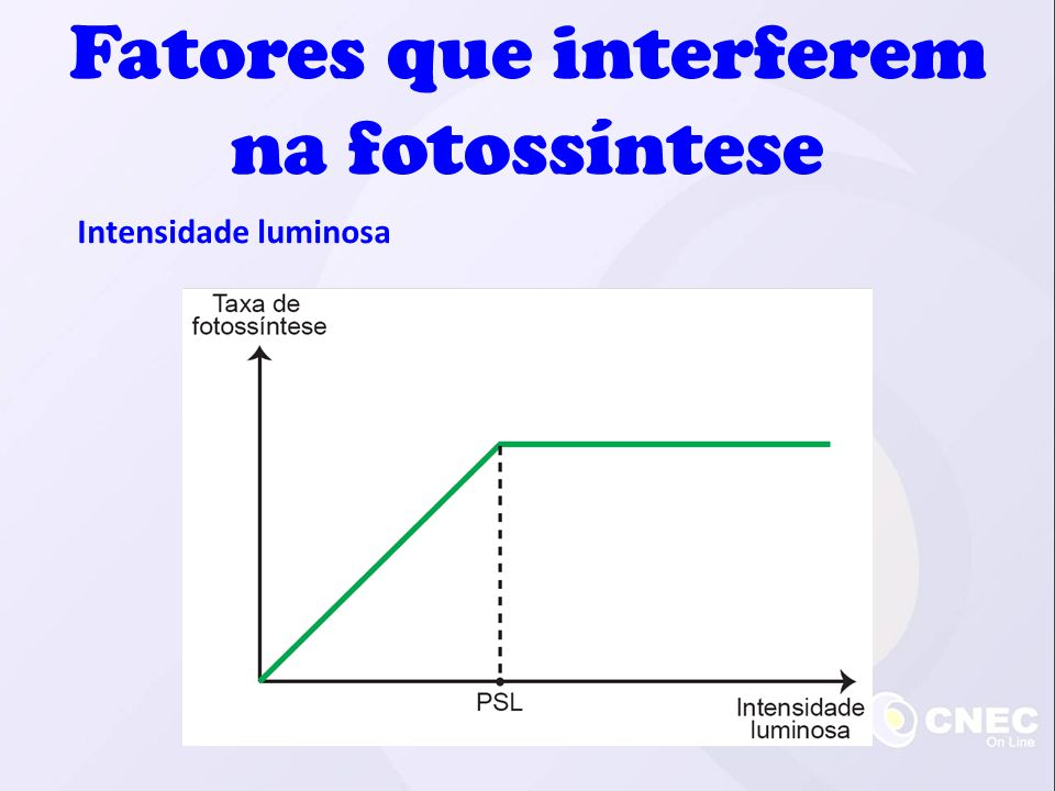 Intensidade luminosa Fatores que interferem na fotossíntese