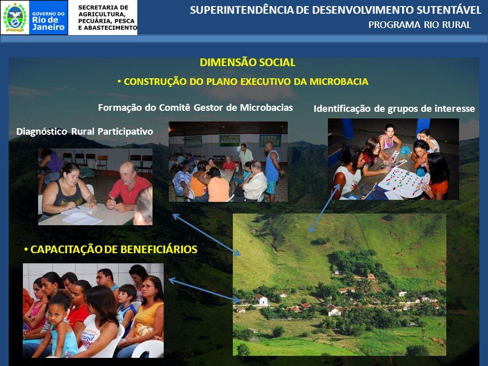 SUPERINTENDÊNCIA DE DESENVOLVIMENTO SUTENTÁVEL PROGRAMA RIO RURAL Formação do Comitê Gestor de Microbacias Identificação de grupos de interesse Diagnóstico Rural Participativo CONSTRUÇÃO DO PLANO EXECUTIVO DA MICROBACIA DIMENSÃO SOCIAL CAPACITAÇÃO DE BENEFICIÁRIOS PROGRAMA RIO RURAL