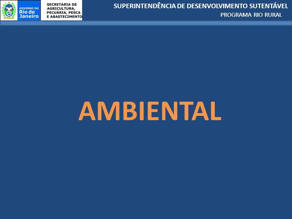 SUPERINTENDÊNCIA DE DESENVOLVIMENTO SUTENTÁVEL PROGRAMA RIO RURAL AMBIENTAL PROGRAMA RIO RURAL