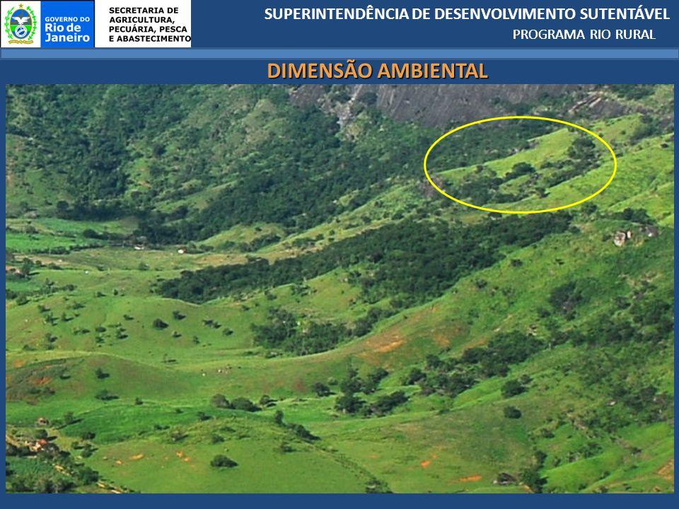SUPERINTENDÊNCIA DE DESENVOLVIMENTO SUTENTÁVEL PROGRAMA RIO RURAL DIMENSÃO AMBIENTAL