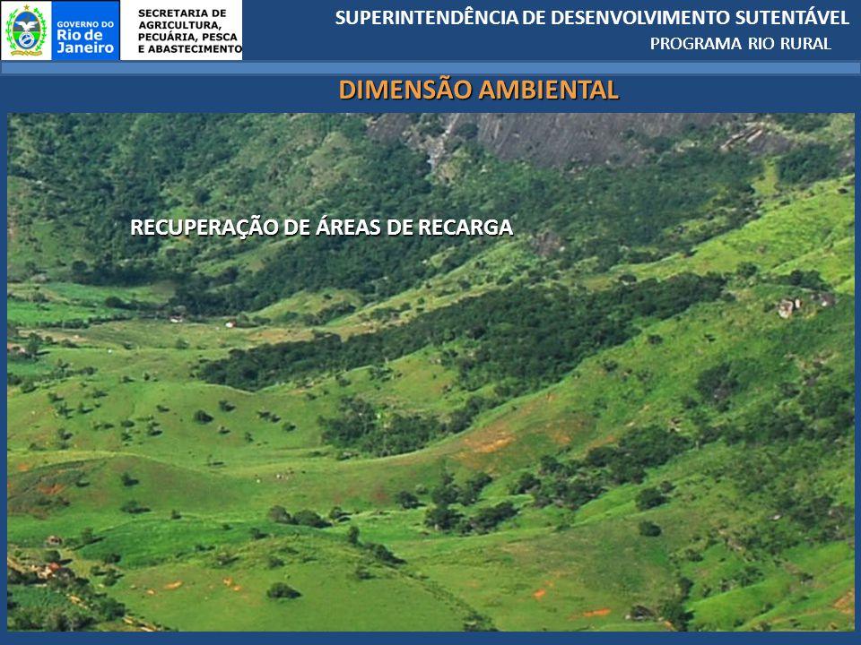 SUPERINTENDÊNCIA DE DESENVOLVIMENTO SUTENTÁVEL PROGRAMA RIO RURAL RECUPERAÇÃO DE ÁREAS DE RECARGA PROGRAMA RIO RURAL DIMENSÃO AMBIENTAL
