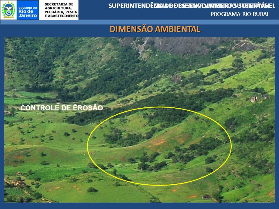 SUPERINTENDÊNCIA DE DESENVOLVIMENTO SUTENTÁVEL PROGRAMA RIO RURAL SUPERINTENDÊCIA DE DESENVOLVIMENTO SUTENTÁVEL PROGRAMA RIO RURAL CONTROLE DE EROSÃO DIMENSÃO AMBIENTAL