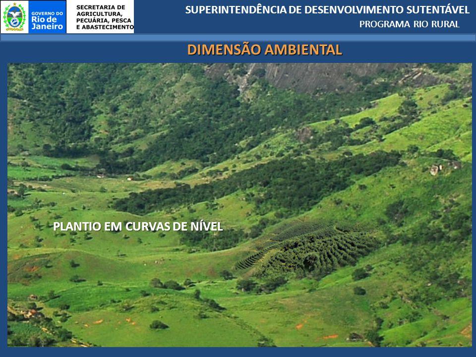 SUPERINTENDÊNCIA DE DESENVOLVIMENTO SUTENTÁVEL PROGRAMA RIO RURAL PLANTIO EM CURVAS DE NÍVEL PROGRAMA RIO RURAL DIMENSÃO AMBIENTAL