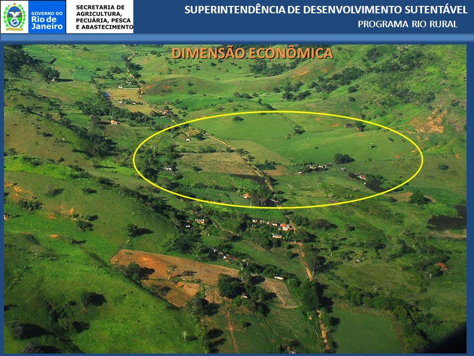 SUPERINTENDÊNCIA DE DESENVOLVIMENTO SUTENTÁVEL PROGRAMA RIO RURAL DIMENSÃO ECONÔMICA