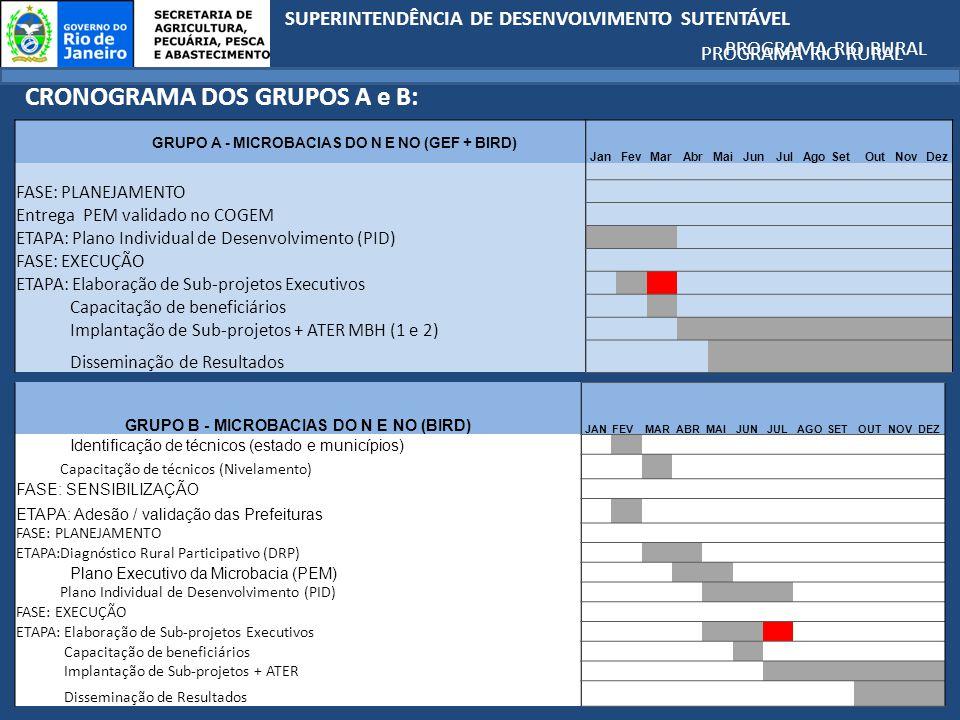 SUPERINTENDÊNCIA DE DESENVOLVIMENTO SUTENTÁVEL PROGRAMA RIO RURAL CRONOGRAMA DOS GRUPOS A e B: GRUPO A - MICROBACIAS DO N E NO (GEF + BIRD) JanFevMarAbrMaiJunJulAgoSetOutNovDez FASE: PLANEJAMENTO Entrega PEM validado no COGEM ETAPA: Plano Individual de Desenvolvimento (PID) FASE: EXECUÇÃO ETAPA: Elaboração de Sub-projetos Executivos Capacitação de beneficiários Implantação de Sub-projetos + ATER MBH (1 e 2) Disseminação de Resultados PROGRAMA RIO RURAL GRUPO B - MICROBACIAS DO N E NO (BIRD) JANFEV MAR ABR MAI JUN JUL AGO SET OUT NOV DEZ Identificação de técnicos (estado e municípios) Capacitação de técnicos (Nivelamento) FASE: SENSIBILIZAÇÃO ETAPA: Adesão / validação das Prefeituras FASE: PLANEJAMENTO ETAPA:Diagnóstico Rural Participativo (DRP) Plano Executivo da Microbacia (PEM) Plano Individual de Desenvolvimento (PID) FASE: EXECUÇÃO ETAPA: Elaboração de Sub-projetos Executivos Capacitação de beneficiários Implantação de Sub-projetos + ATER Disseminação de Resultados