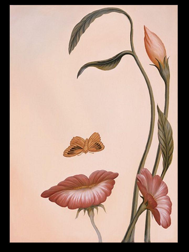 Por trás de um bonito rosto posso, encontrar a bela natureza divina que existe em mim...