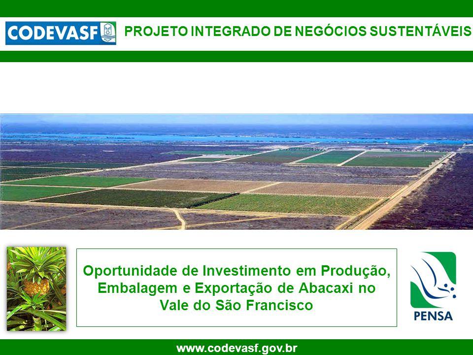 1 www.codevasf.gov.br Oportunidade de Investimento em Produção, Embalagem e Exportação de Abacaxi no Vale do São Francisco PROJETO INTEGRADO DE NEGÓCI