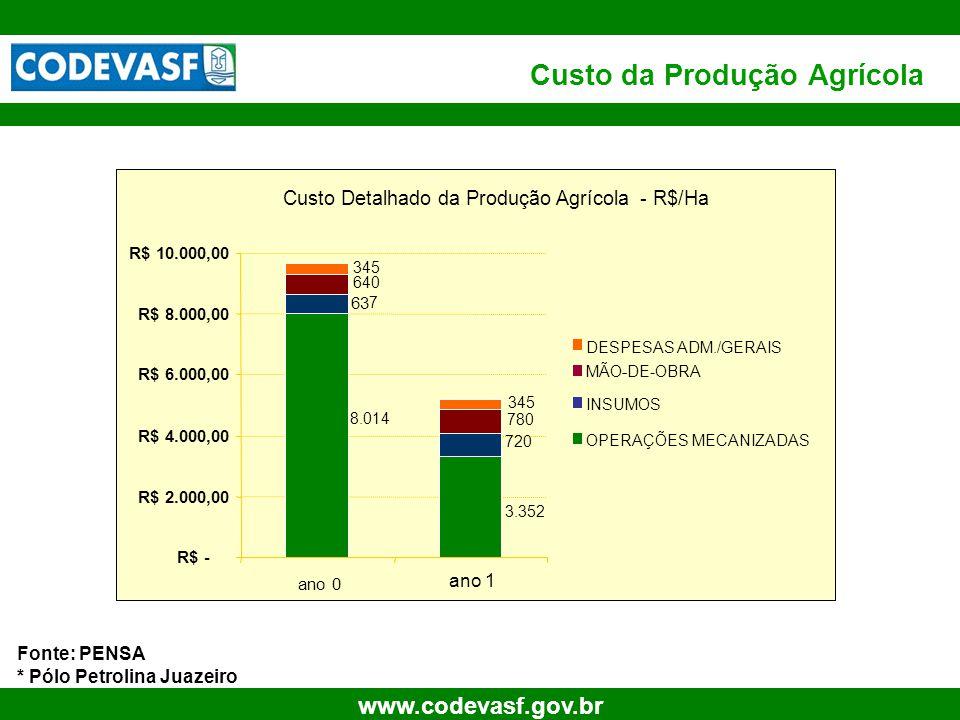 12 www.codevasf.gov.br Custo da Produção Agrícola Fonte: PENSA * Pólo Petrolina Juazeiro Custo Detalhado da Produção Agrícola - R$/Ha 3.352 8.014 720