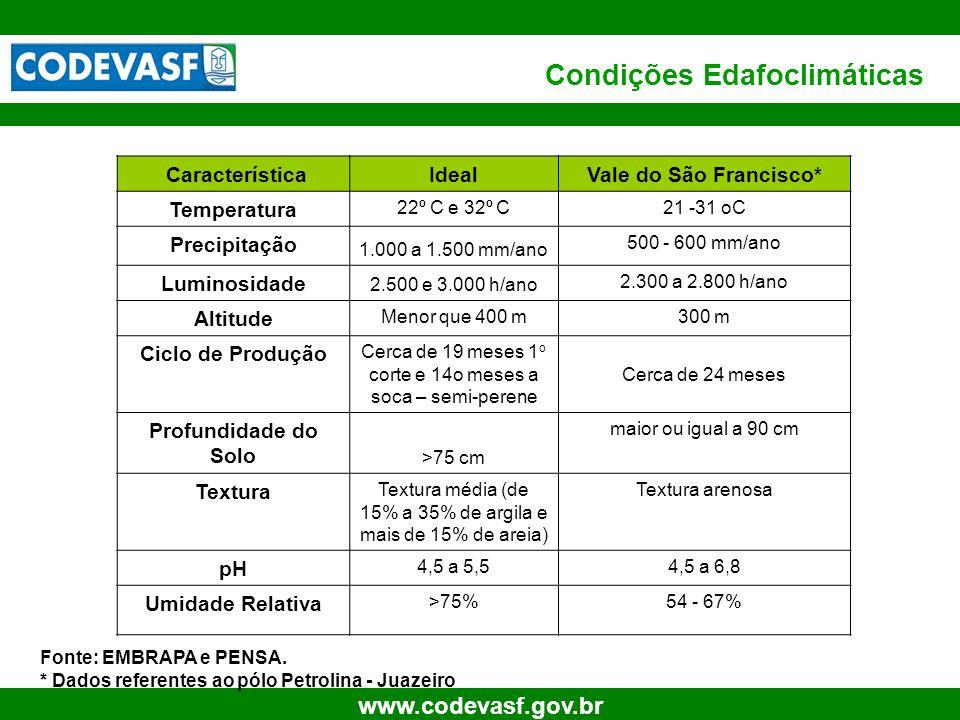 24 www.codevasf.gov.br Condições Edafoclimáticas CaracterísticaIdealVale do São Francisco* Temperatura 22º C e 32º C21 -31 oC Precipitação 1.000 a 1.5
