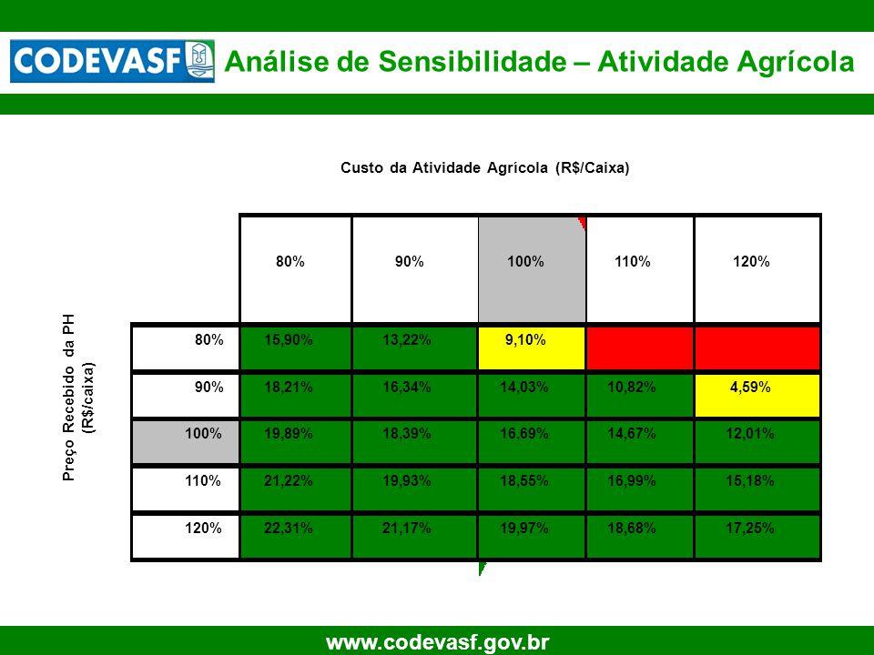 27 www.codevasf.gov.br Análise de Sensibilidade – Atividade Agrícola 80%90%100%110%120% 80%15,90%13,22%9,10%#NÚM!#DIV/0! 90%18,21%16,34%14,03%10,82%4,