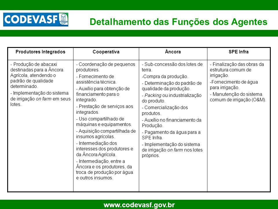 8 www.codevasf.gov.br Produtores IntegradosCooperativaÂncoraSPE Infra - Produção de abacaxi destinadas para a Âncora Agrícola, atendendo o padrão de q