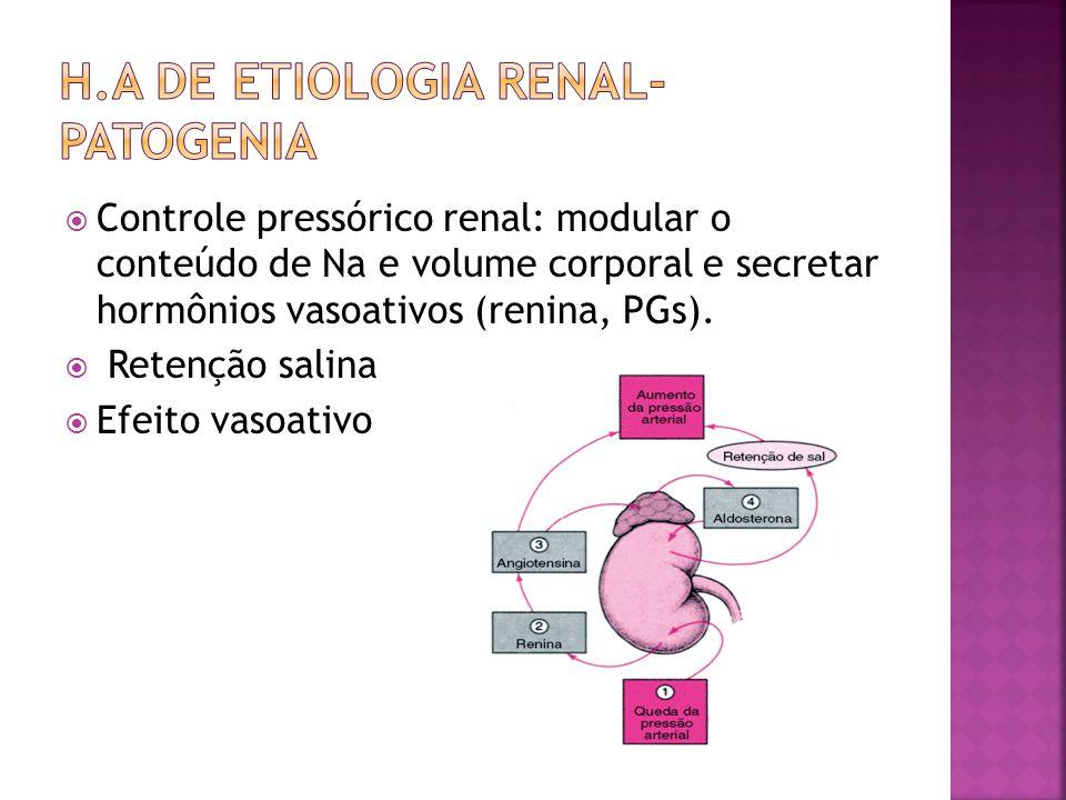 Controle pressórico renal: modular o conteúdo de Na e volume corporal e secretar hormônios vasoativos (renina, PGs). Retenção salina Efeito vasoativo