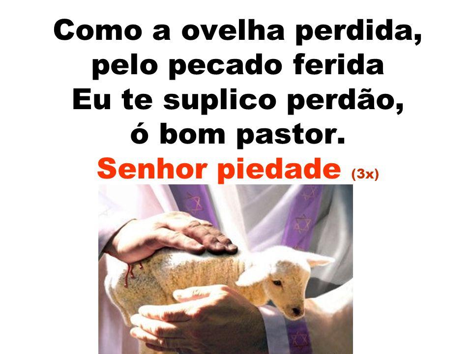 Como a ovelha perdida, pelo pecado ferida Eu te suplico perdão, ó bom pastor. Senhor piedade (3x)