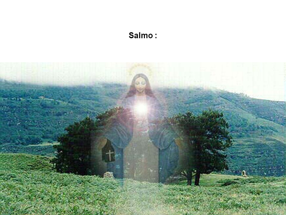 Salmo :