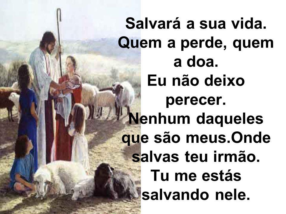 Salvará a sua vida. Quem a perde, quem a doa. Eu não deixo perecer. Nenhum daqueles que são meus.Onde salvas teu irmão. Tu me estás salvando nele.