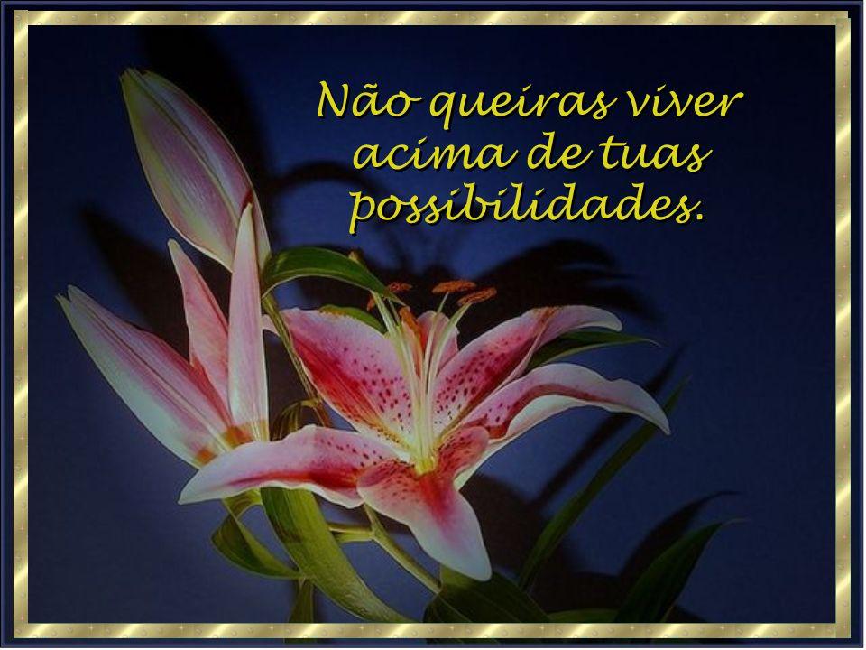 Não queiras viver acima de tuas possibilidades. Não queiras viver acima de tuas possibilidades.