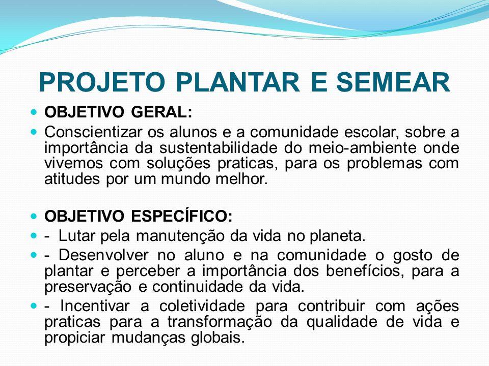 PROJETO PLANTAR E SEMEAR DESENVOLVIMENTO: Foram adquiridas mudas do horto florestal da Prefeitura Municipal de Dois Vizinhos e as sementes doadas pelos alunos.