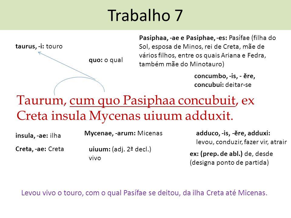 Trabalho 7 Taurum, cum quo Pasiphaa concubuit, ex Creta insula Mycenas uiuum adduxit. Levou vivo o touro, com o qual Pasífae se deitou, da ilha Creta
