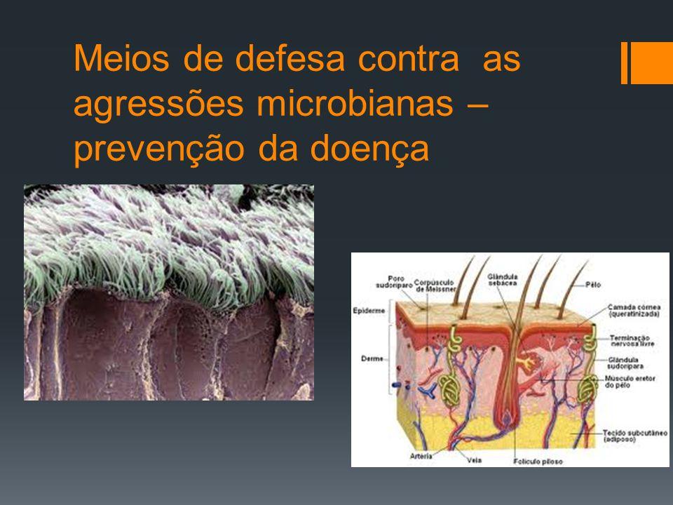 O organismo humano está permanentemente em contacto com micróbios causadores de doenças.