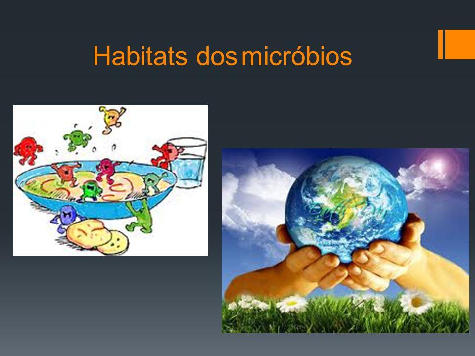 Os micróbios estão presentes na Natureza em todos os ambientes terrestres e aquáticos e nos mais diversos habitats.