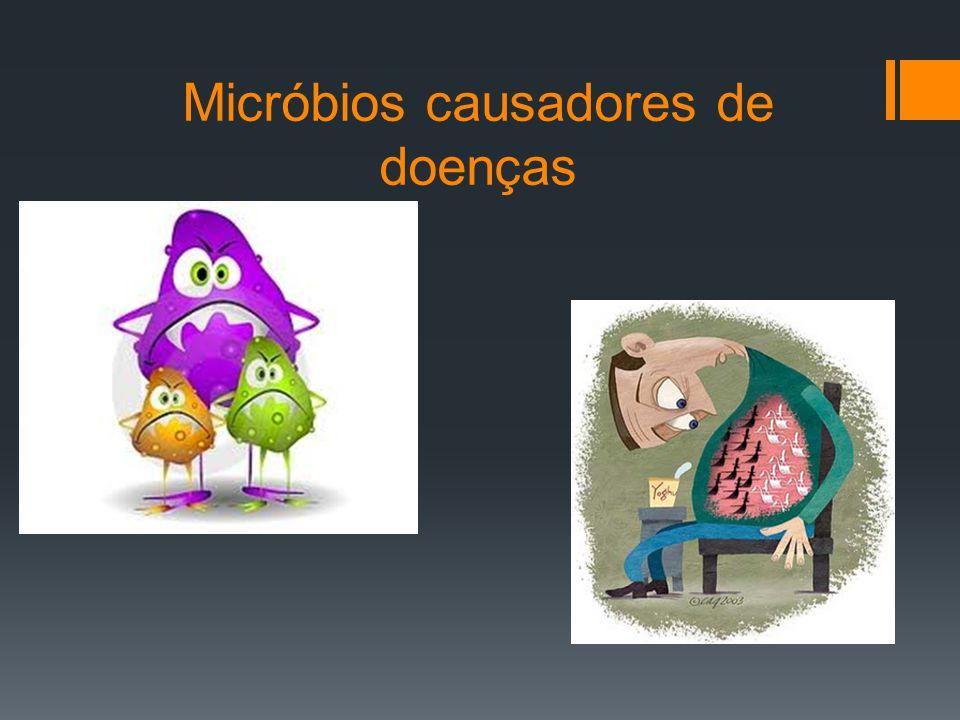 Os vírus, as bactérias, os fungos e os protozoários são denominados micróbios patogénicos (podem causar doenças).