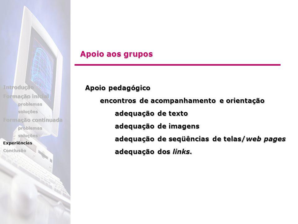 Apoio pedagógico encontros de acompanhamento e orientação adequação de texto adequação de imagens adequação de seqüências de telas/web pages adequação