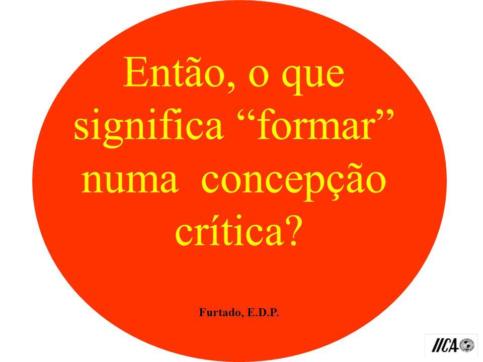 Na prática: Pode gerar fragmentação do tecido social se não for levado em conta princípios éticos comuns Furtado, E.D.P.