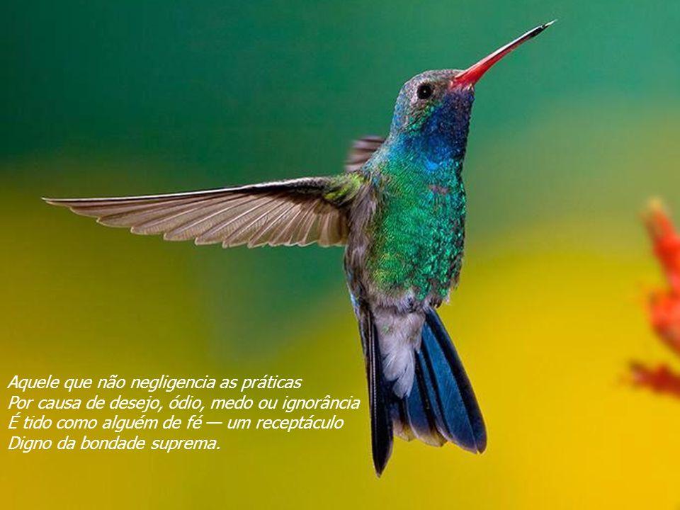 VISITE para mensagens gratuitas PowerPointSemanal Por meio da fé, o homem confia-se às práticas; Por meio da sabedoria, conhece verdadeiramente; Da am