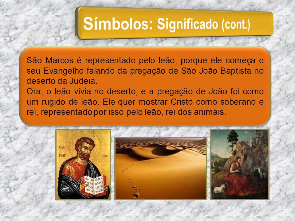 São Marcos é representado pelo leão, porque ele começa o seu Evangelho falando da pregação de São João Baptista no deserto da Judeia. Ora, o leão vivi