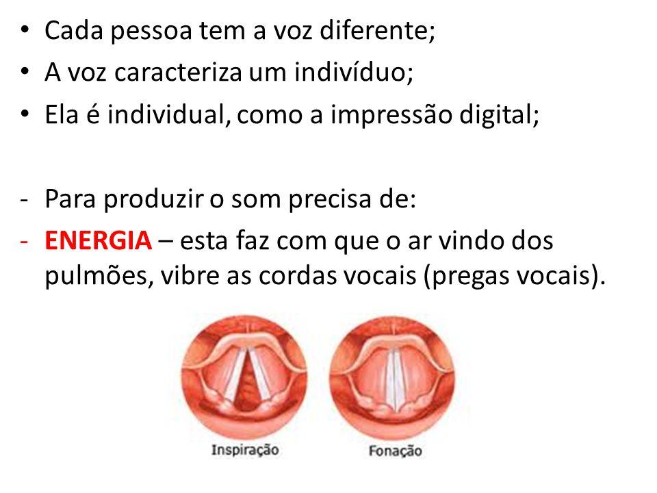 Cada pessoa tem a voz diferente; A voz caracteriza um indivíduo; Ela é individual, como a impressão digital; -Para produzir o som precisa de: -ENERGIA