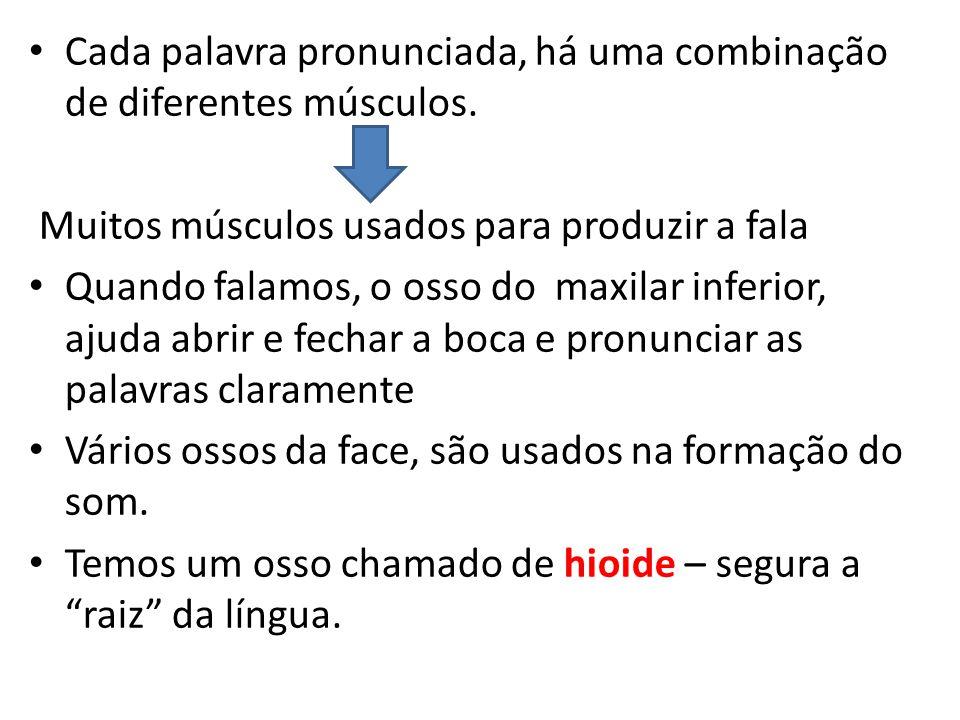 Cada palavra pronunciada, há uma combinação de diferentes músculos. Muitos músculos usados para produzir a fala Quando falamos, o osso do maxilar infe