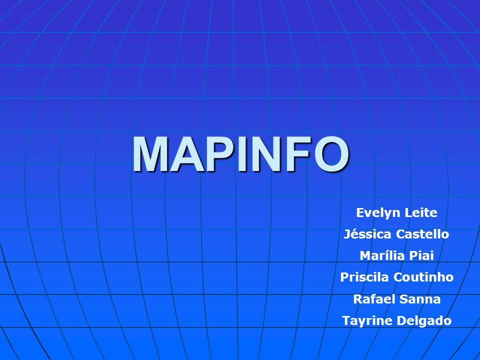 MAPINFO Evelyn Leite Jéssica Castello Marília Piai Priscila Coutinho Rafael Sanna Tayrine Delgado
