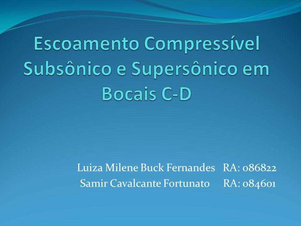 Luiza Milene Buck Fernandes RA: 086822 Samir Cavalcante Fortunato RA: 084601