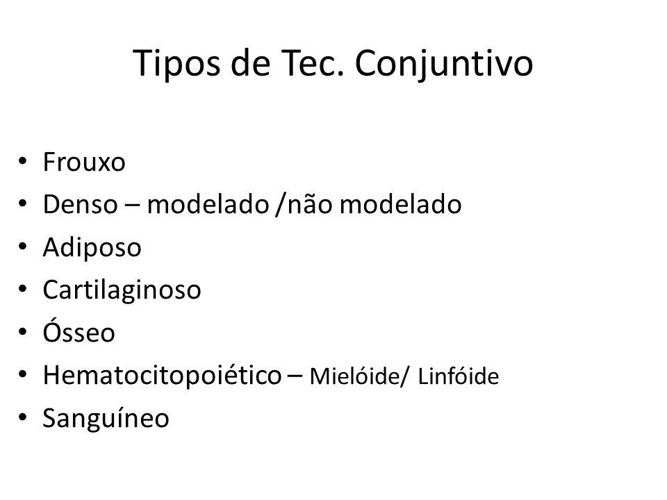 Tipos de Tec. Conjuntivo Frouxo Denso – modelado /não modelado Adiposo Cartilaginoso Ósseo Hematocitopoiético – Mielóide/ Linfóide Sanguíneo