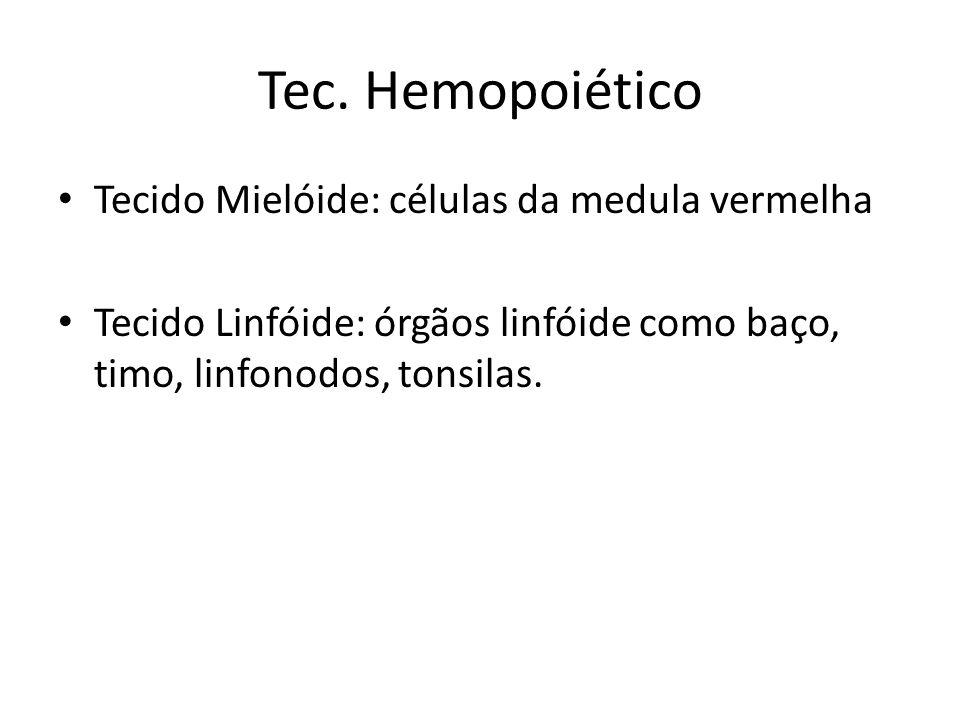 Tec. Hemopoiético Tecido Mielóide: células da medula vermelha Tecido Linfóide: órgãos linfóide como baço, timo, linfonodos, tonsilas.