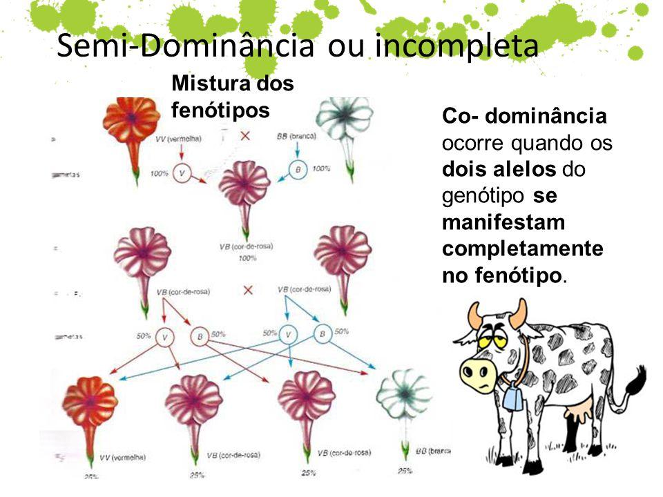 Semi-Dominância ou incompleta Mistura dos fenótipos Co- dominância ocorre quando os dois alelos do genótipo se manifestam completamente no fenótipo.