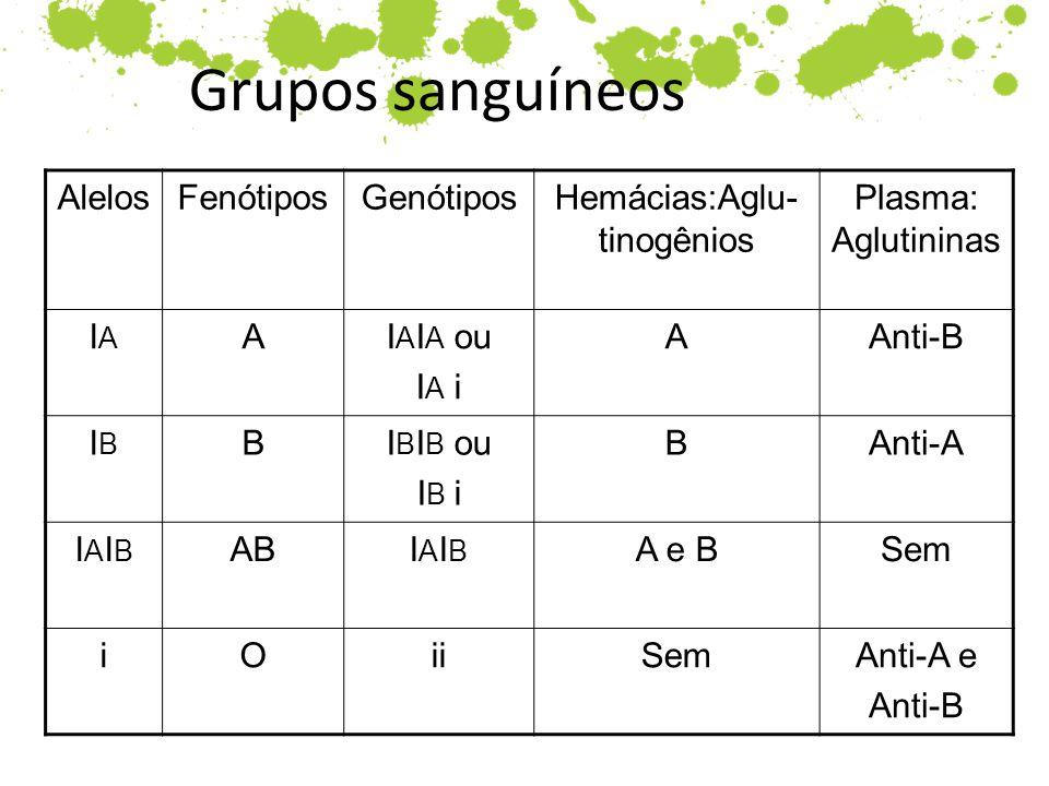 Grupos sanguíneos AlelosFenótiposGenótiposHemácias:Aglu- tinogênios Plasma: Aglutininas IAIA AI A I A ou I A i AAnti-B IBIB BI B I B ou I B i BAnti-A