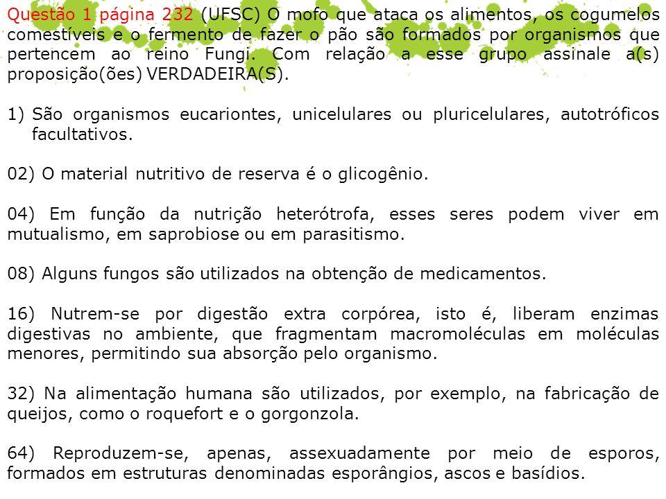 Questão 1 página 232 (UFSC) O mofo que ataca os alimentos, os cogumelos comestíveis e o fermento de fazer o pão são formados por organismos que perten