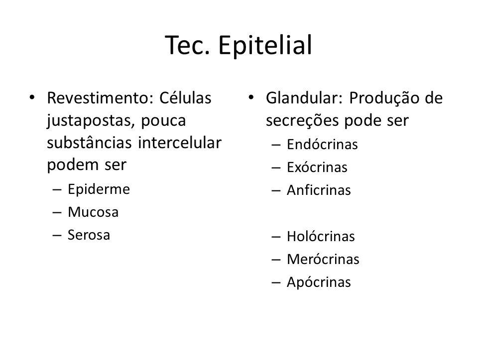 Tec. Epitelial Revestimento: Células justapostas, pouca substâncias intercelular podem ser – Epiderme – Mucosa – Serosa Glandular: Produção de secreçõ