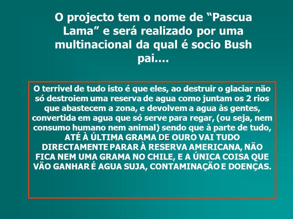 O projecto tem o nome de Pascua Lama e será realizado por uma multinacional da qual é socio Bush pai....