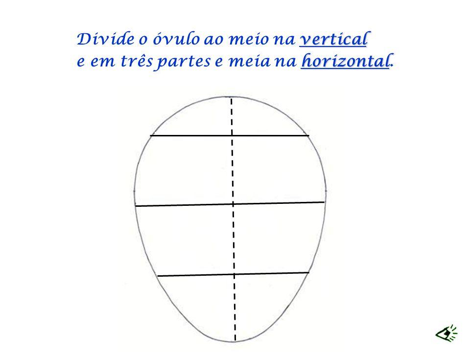 Divide o óvulo ao meio na v vv vertical e em três partes e meia na h hh horizontal.