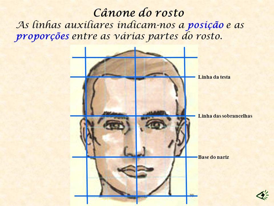 Cânone do rosto As linhas auxiliares indicam-nos a posição e as proporções entre as várias partes do rosto. Base do nariz Linha da testa Linha das sob