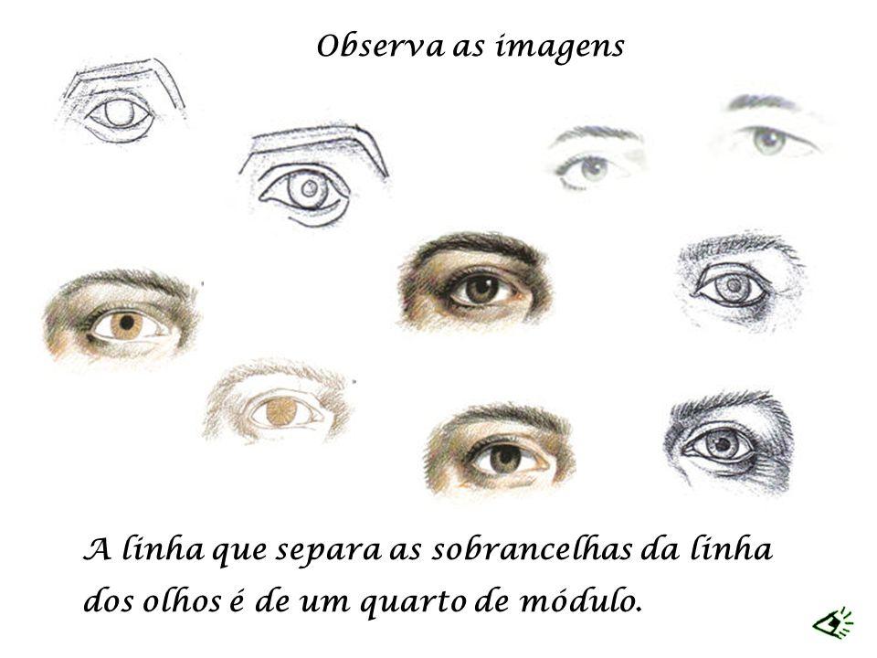A linha que separa as sobrancelhas da linha dos olhos é de um quarto de módulo. Observa as imagens
