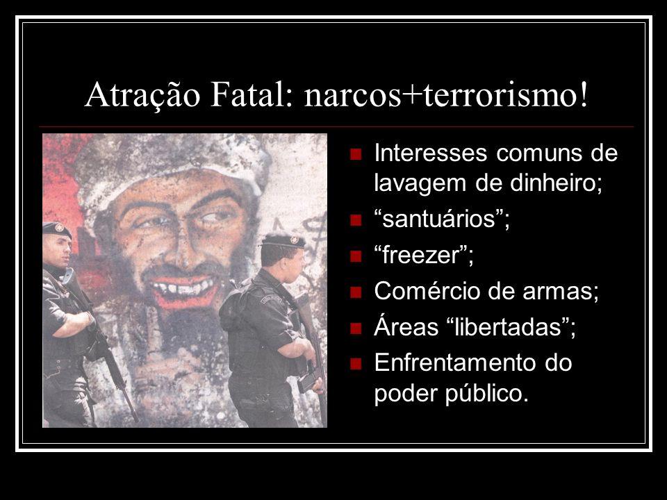 Atração Fatal: narcos+terrorismo! Interesses comuns de lavagem de dinheiro; santuários; freezer; Comércio de armas; Áreas libertadas; Enfrentamento do