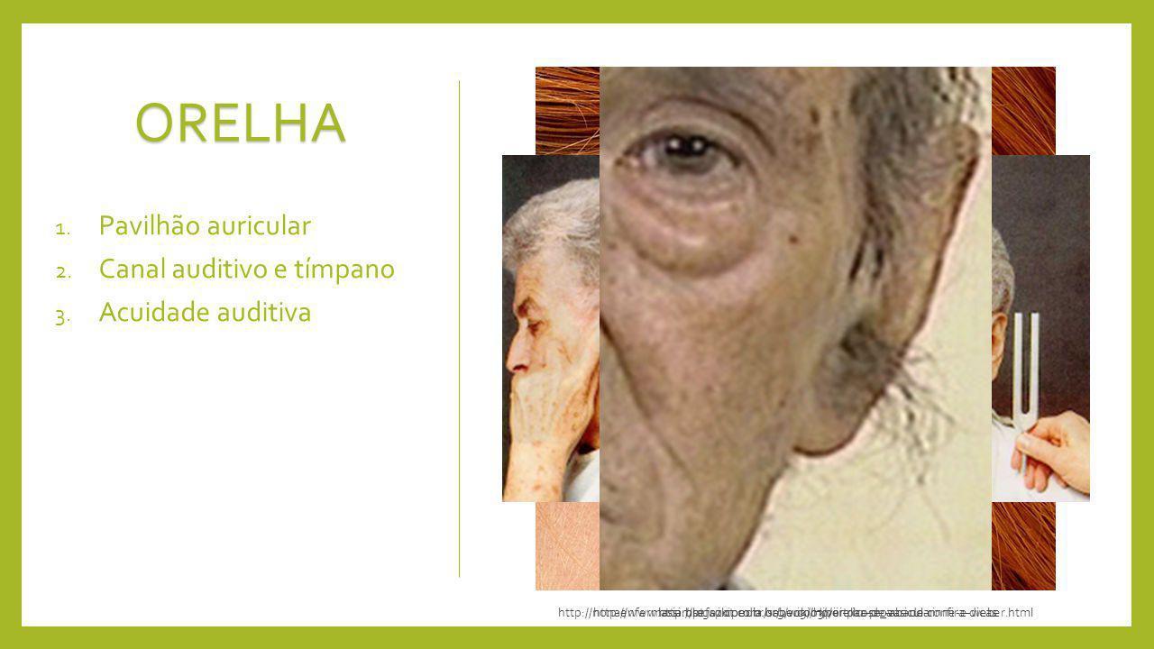 ORELHA 1. Pavilhão auricular 2. Canal auditivo e tímpano 3. Acuidade auditiva http://www.assimsefaz.com.br/sabercomo/orelha-de-abano-confira-dicashttp