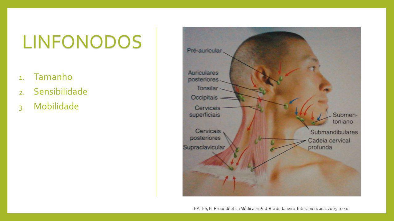 LINFONODOS 1. Tamanho 2. Sensibilidade 3. Mobilidade BATES, B. Propedêutica Médica. 10ªed. Rio de Janeiro. Interamericana, 2005. p240.
